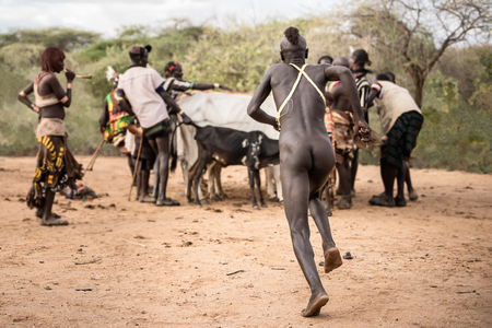 ethiopian ethnicity: TURMI, ETHIOPIA - AUGUST 17,2015: unidentified boy from hamer tribe take a run up for jumping over the bulls during the bull jumping ceremony. Bull jumping is an initiation ceremony for young boy. Editorial