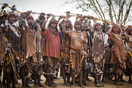 ethiopian ethnicity: TURMI, ETHIOPIA - AUGUST 17,2015: unidentified women from Hamer tribe raise a stick over their heads just before the boy start jumping over the bulls in the Bull Jumping ceremony.