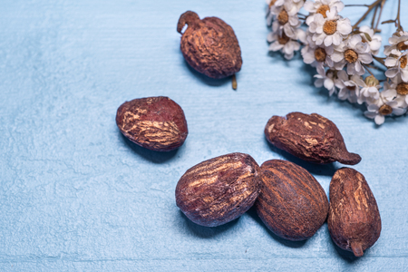Shea butter nuts on a blue background with flowers. Copy space Stock Photo