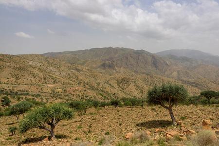 Desert lanscape in the Tigray region of Ethiopia, near to Makalle Stock Photo