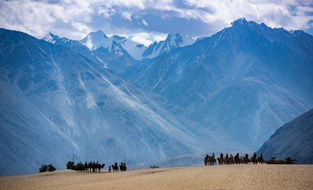 trip in the sand dunes of Nubra Valley, Ladakh Stock Photo