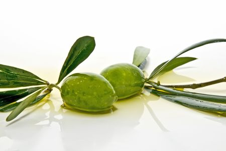 hojas: very freshly harvested olives Stock Photo