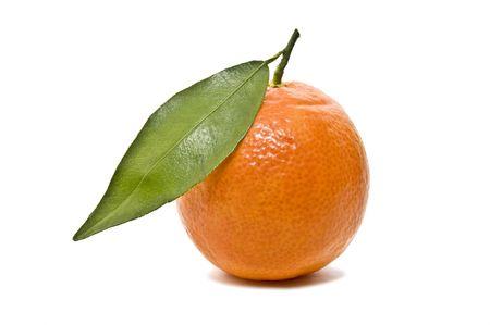 hojas: tangerine