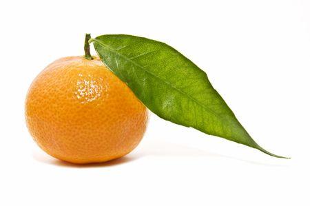 agricultura: tangerine