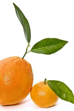 hojas: orange and tangerine Stock Photo