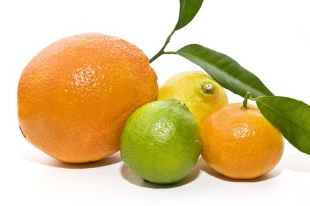 citrus variety photo