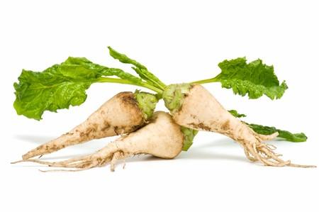 sugar beet on white background photo