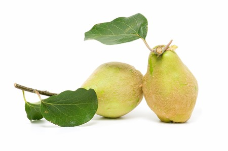 quince: ecological quince