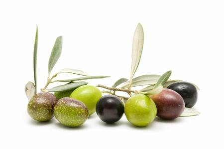 olive leaves: fresh olives