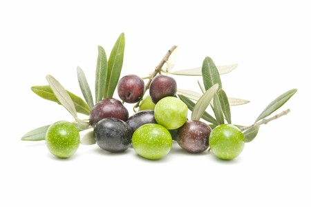 fresh olives photo