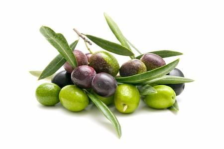 hoja de olivo: variedad de aceitunas