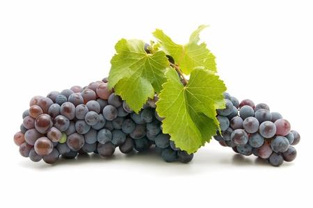 organic grapes photo