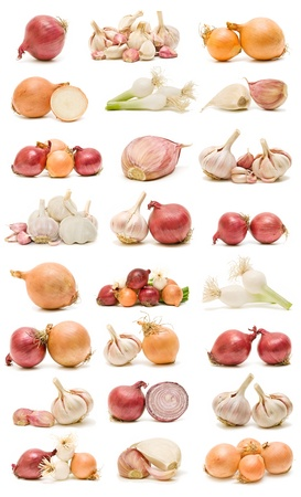 collection of garlic and onions Standard-Bild