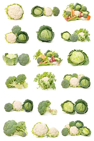 green cabbage: collection of broccoli, cauliflower and cabbage