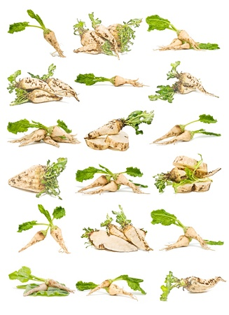 collection of sugar beet Stock Photo