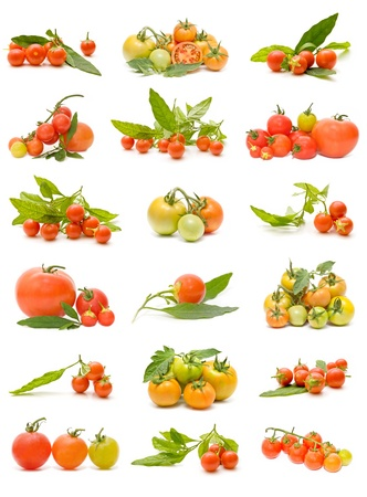 Collection of tomatoes photo