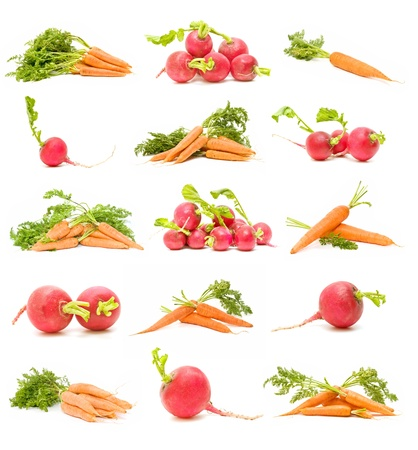Collection of carrots and radishes
