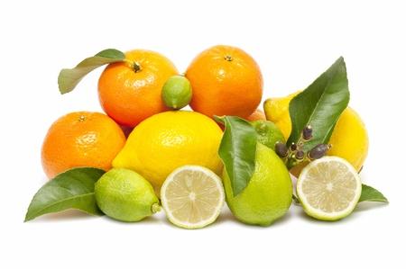 mandarina: ecological citrus