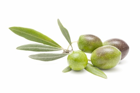 ecological olives Stock Photo - 8709874