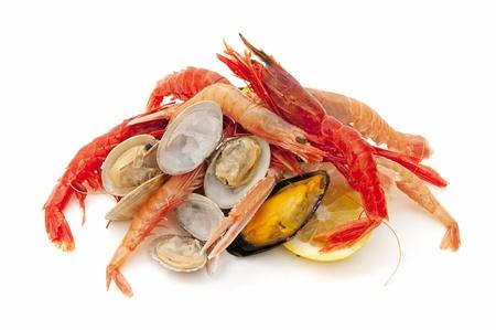 Gemischte Meeresfrüchte Standard-Bild - 9468573