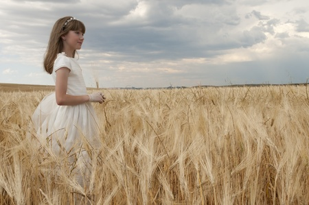 Chica con vestido de primera comunión entre la cebada Foto de archivo - 10082264