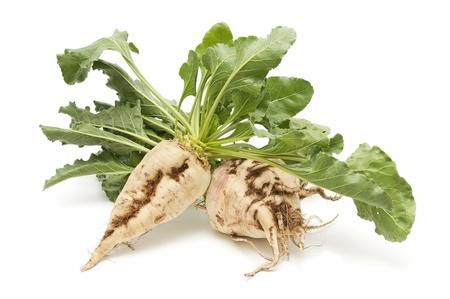 remolacha: azúcar de remolacha recién cosechada en el fondo blanco
