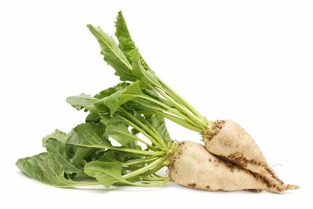 freshly harvested sugar beet on white background photo