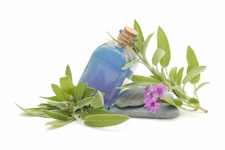 spa still life with perfumes and aromatic herbs  photo