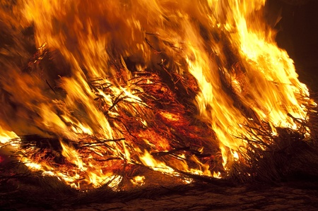 flames of fire at night Stock Photo - 12542760