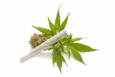 marijuana leaf and cigarette photo
