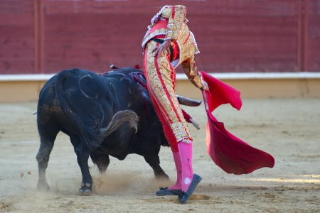 A detail of a bullfight in Spain photo