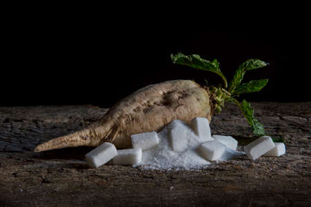 sugar beet and white sugar on an old wooden table Standard-Bild