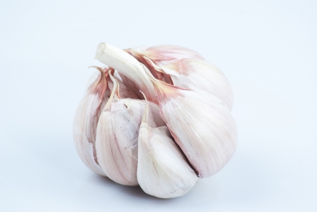 garlic on white background photo