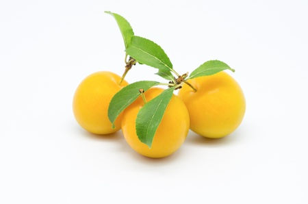 studio shot three yellow plums on white background