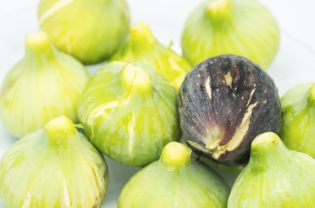 fig macro photography recently collected on white background Stock Photo