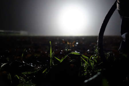 Leaves ,gras and a rope on the ground in floodlights as a close up