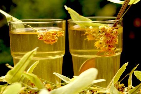 linden tea: Fresh healthy linden tea and linden flower