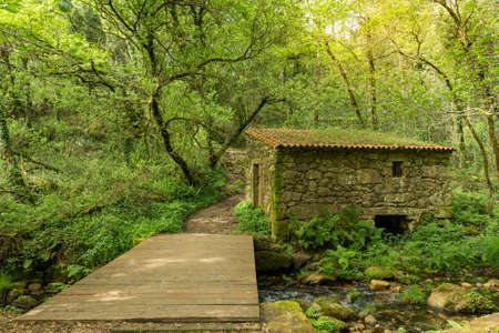Old boathouse on the river with a wooden walkway