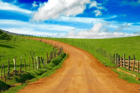 clear path: dirt road and meadow, please check out my portfolio for more! Stock Photo
