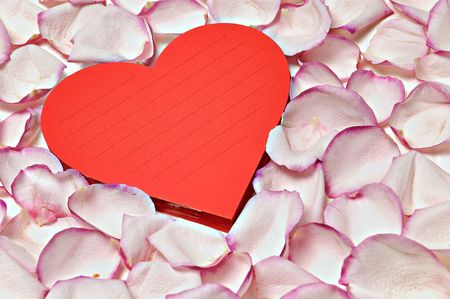 heart shaped notepad in a bed of petals photo