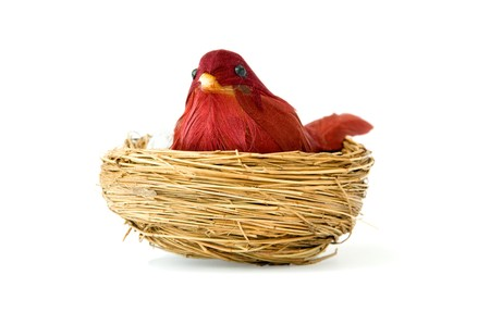 old bird toy and nest isolated over white