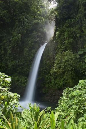 pine creek: La paz waterfall, costa rica