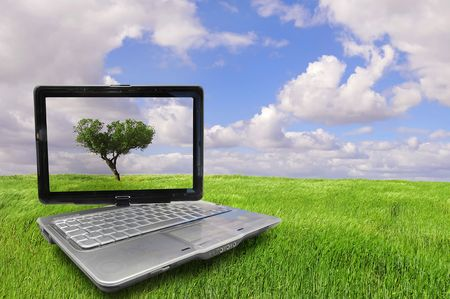 panoramic nature: Notebook with tree isolated against the sky in a green field Stock Photo