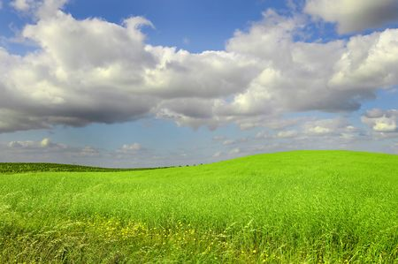 Beautiful image of a grass field with blue cloudy sky photo