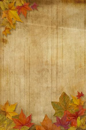 Autumn background with maple leaves over a weathered paper