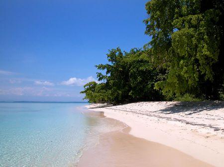 Idyllic tropical island in Bocas del toro, Panama photo