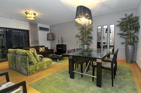 Modern apartment living room decoration Stock Photo - 8103627