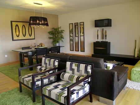 Modern apartment living room decoration Stock Photo - 8239394