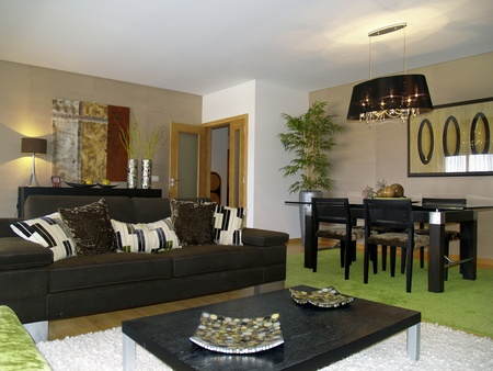 Modern apartment living room decoration Stock Photo - 8519208