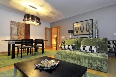 Modern apartment living room decoration Stock Photo - 8829315